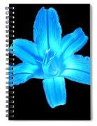 Blue Lily Spiral Notebook