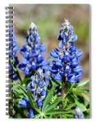 Blue Lupines Spiral Notebook