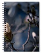 Blue Magnolia Spiral Notebook