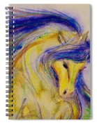 Blue Mane And Tail Spiral Notebook
