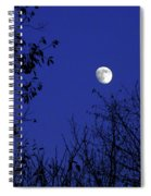 Blue Moon Among The Tree Tops Spiral Notebook