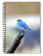 Blue Morning Spiral Notebook