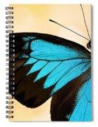 Blue Morpho Closeup Spiral Notebook