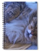 Blue Oblivion Spiral Notebook