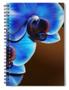Blue Orchids Spiral Notebook