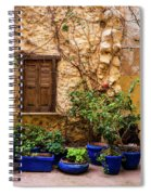 Blue-painted Plant Pots Spiral Notebook