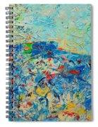 Blue Play 4 Spiral Notebook