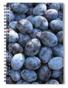 Blue Plums Spiral Notebook