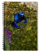 Blue Poison Arrow Frog Spiral Notebook
