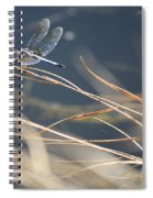 Blue Pond Spiral Notebook