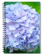 Blue Purple Hydrandea Floral Art Botanical Prints Canvas Spiral Notebook