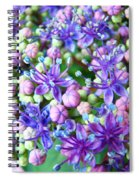 Blue Purple Hydrangea Flower Macro Art Spiral Notebook