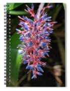 Blue Red Plant Spiral Notebook