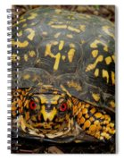 Blue Ridge Box Turtle Spiral Notebook