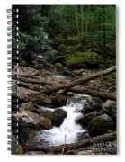 Blue Ridge Brook Spiral Notebook