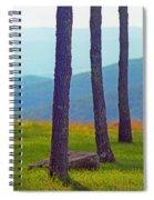 Blue Ridge Mountains Of Virginia Spiral Notebook