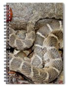 Montreat Water Snake Spiral Notebook