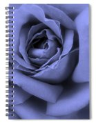 Blue Rose Abstract Spiral Notebook