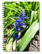 Blue Sage Spiral Notebook