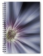 Blue Satin Spiral Notebook