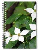 Blue Shadow Dogwood Flowers Spiral Notebook