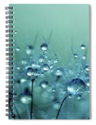 Blue Shower Spiral Notebook