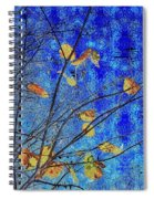 Blue Skies And Last Leaves Of Fall Spiral Notebook