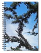 Blue Sky Art Prints White Clouds Conifer Pine Branches Baslee Troutman Spiral Notebook