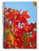 Blue Sky Autumn Art Prints Colorful Fall Tree Leaves Baslee Spiral Notebook