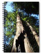 Blue Sky Big Redwood Trees Forest Art Prints Baslee Troutman Spiral Notebook