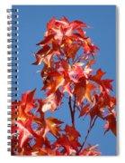 Blue Sky Fall Tree Leaves Landscape Art Prints Baslee Troutman Spiral Notebook