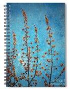 Blue Sky On A Sunday Spiral Notebook