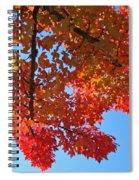 Blue Sky Red Autumn Leaves Sunlit Orange Baslee Troutman  Spiral Notebook