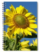 Blue Sky Sunflower Day Spiral Notebook