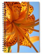 Blue Sky Sunshine Tiger Lily Flowers Giclee Prints Baslee Troutman Spiral Notebook