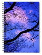 Blue Sky Through The Trees Spiral Notebook