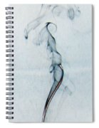 Blue Smoke Trail  Spiral Notebook