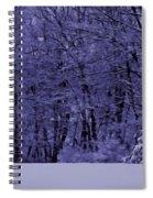 Blue Snow Spiral Notebook