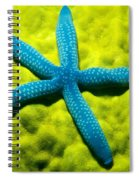Blue Starfish On Poritirs Spiral Notebook