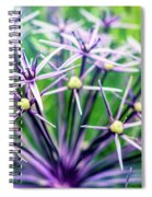Blue Stars Spiral Notebook