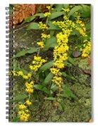 Blue-stemmed Goldenrod - Solidago Caesia Spiral Notebook
