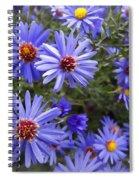 Blue Street Daisies Spiral Notebook