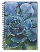 Blue Succulent Spiral Notebook