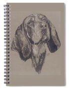 Blue Tick Coonhound Spiral Notebook