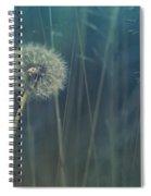 Blue Tinted Spiral Notebook