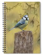 Blue Tit Bird II Spiral Notebook