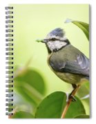 Blue Tit With Caterpillar Spiral Notebook
