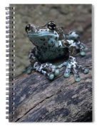 Blue Tree Frog Spiral Notebook