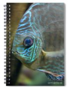 Blue Tropical Fish Spiral Notebook