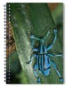 Blue Weevel Spiral Notebook